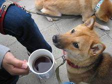 コーヒーと楽.JPG